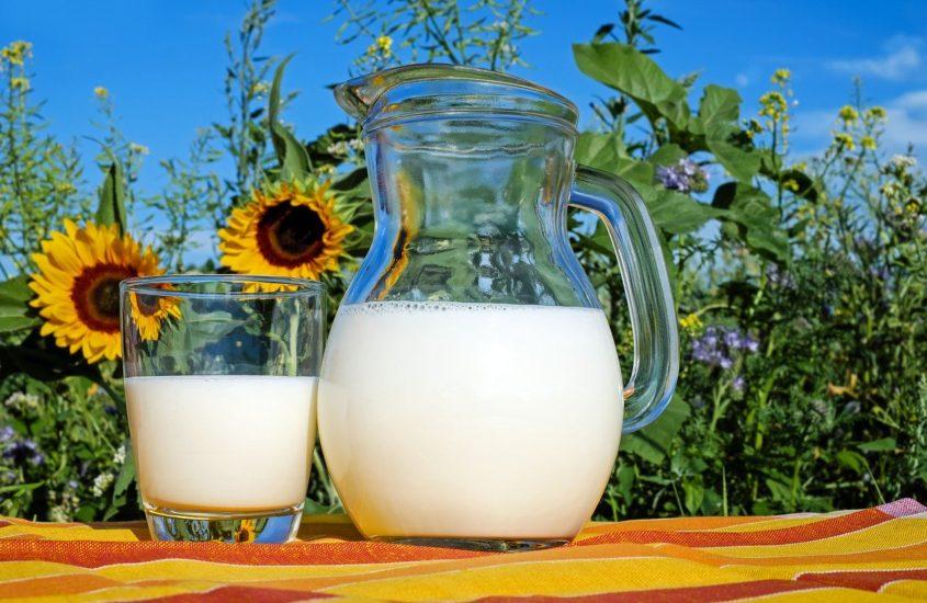 Сами с усами: история про молоко